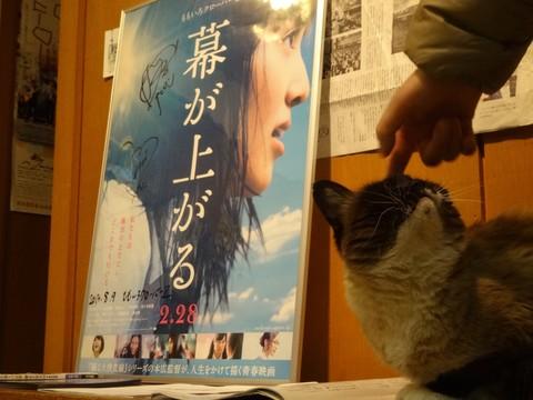 20160117 大黒座チャレンジFBページ投稿写真�A(モノノフたちへ).JPG